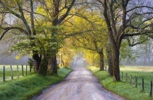 Scenic road in Cades Cove.