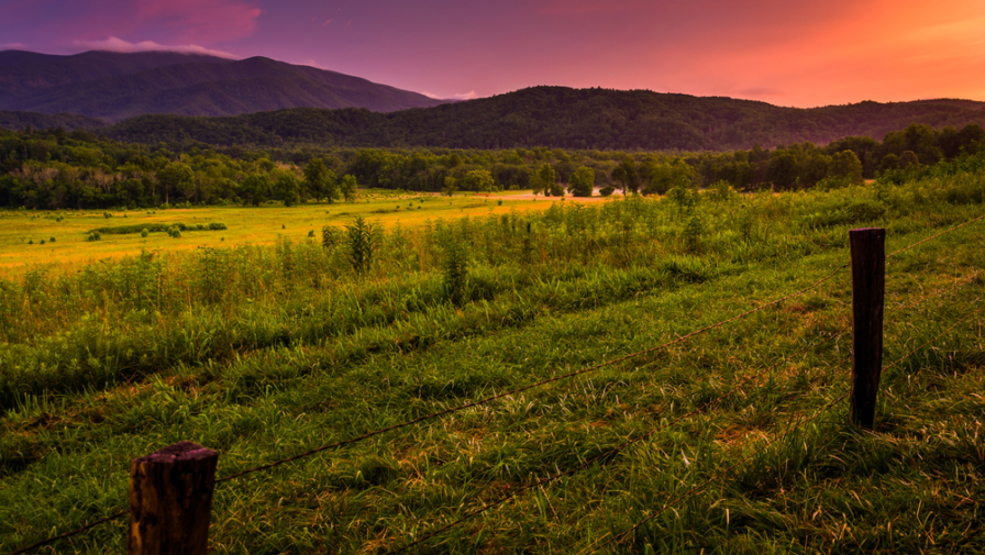 What are the Best Times to Visit Cades Cove