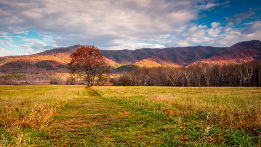 4 Reasons Cades Cove Tennessee is the Perfect Place to Visit in the Fall