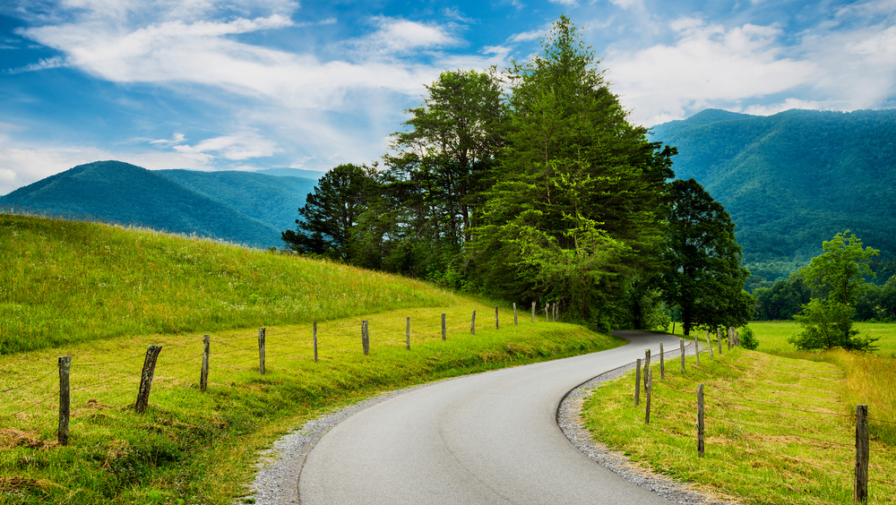 4 Fun Ways To Spend Time In The Cades Cove Park