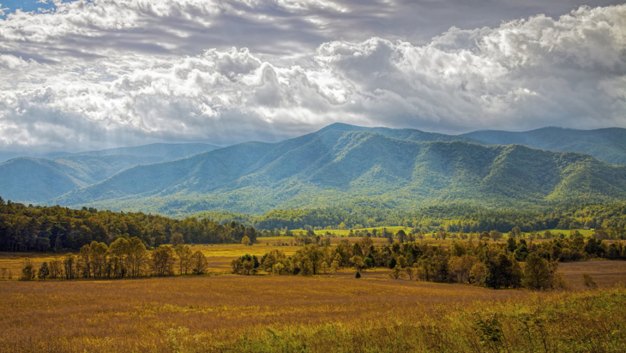 What You Need to Know About the Cades Cove Weather