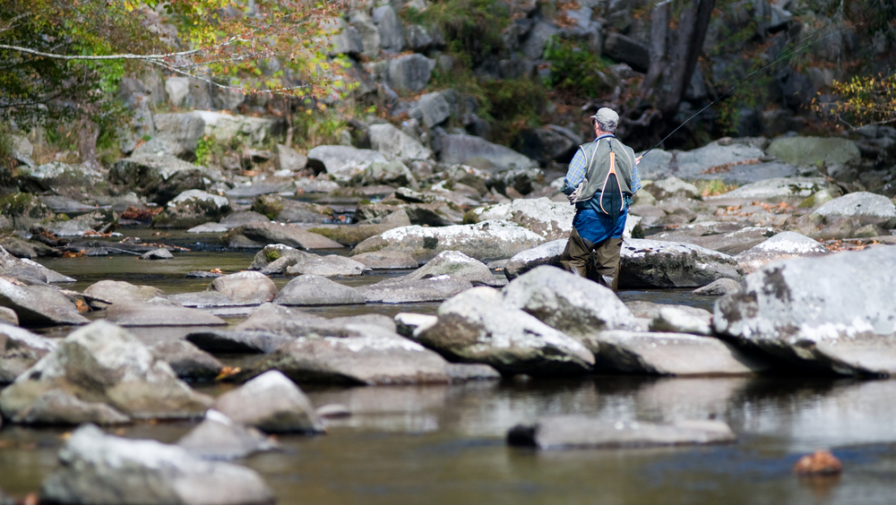 3 Important Things to Know Before Fishing in Cades Cove