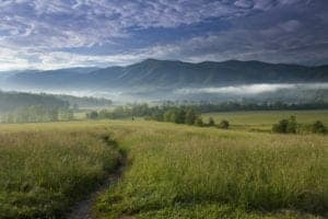 Cades Cove during summer