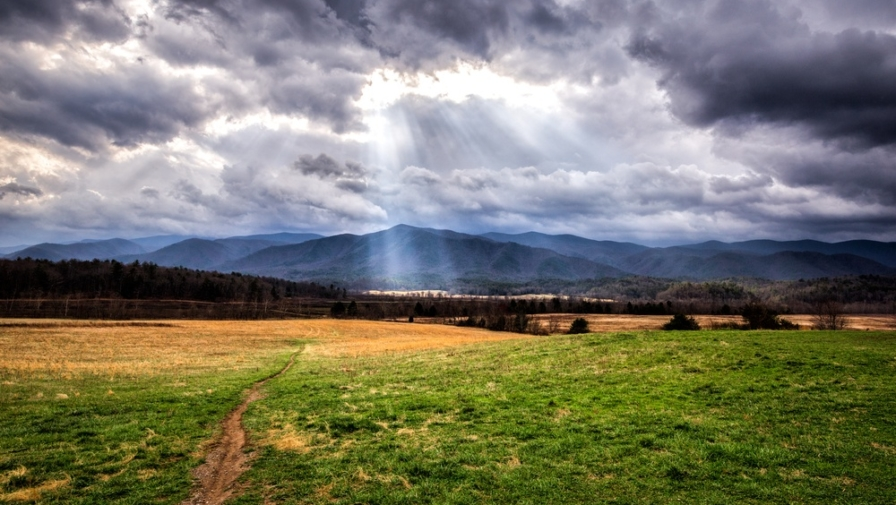 Top 5 Reasons to Stay at the Cades Cove Campground