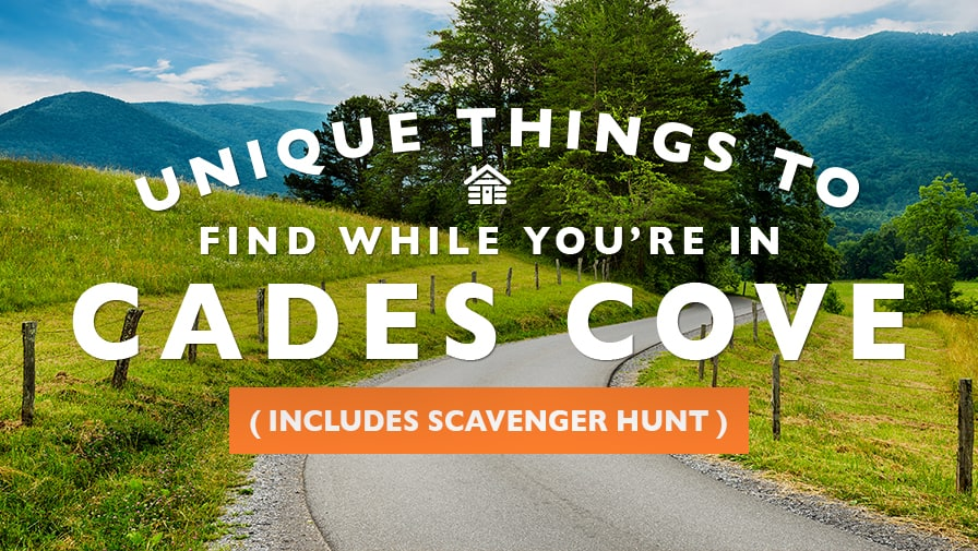 Unique Things to Find While You're in Cades Cove (Includes Scavenger Hunt)