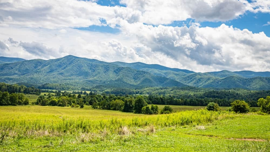 New Handicap Accessible Trail Now Open in Cades Cove